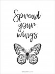 Plakat Spread your wings