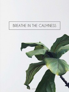 Plakat Breathe in the calmness
