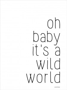 Plakat Wild world