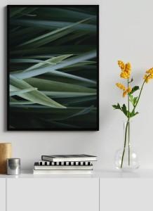 Plakaty Botaniczne I Grafika Rośliny Plakat Tropikalny