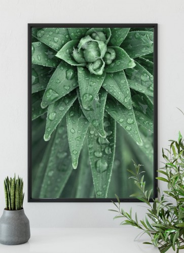 Plakat Light green w czarnej ramie